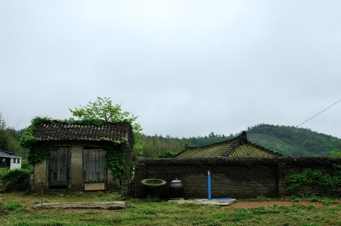 2011051201.jpg
